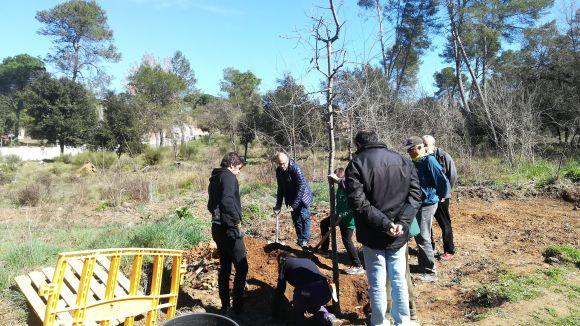 La 5a Festa de l'Arbre posa de manifest la necessitat de preservar els espais naturals i la biodivesitat