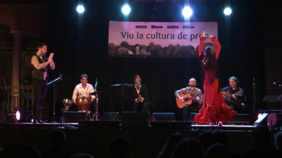 http://www.cugat.cat/fotos/imgtv/160514-xccp_flamenc_fresca_ok.jpg
